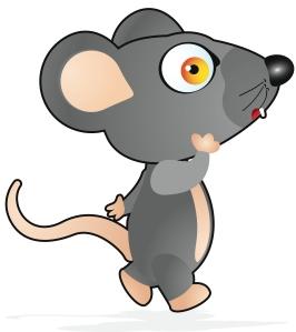 nice rat